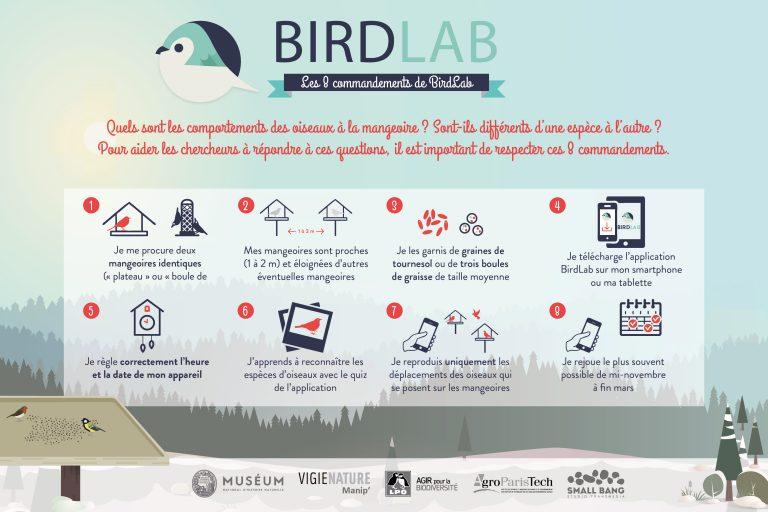 E3D: Birdlab, Étude des oiseaux du jardin