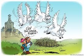 Jeu pour tous: Reconnaissance des oiseaux