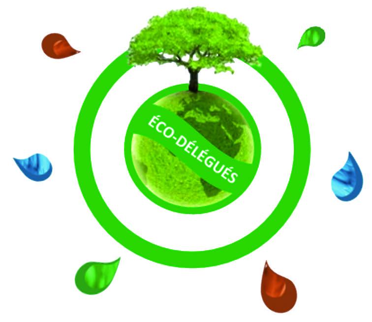 Les éco-délégués