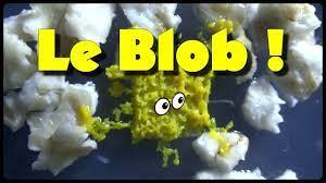 Journal de Blob 1